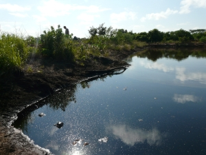 Oil-slicked lagoon at PDVSA oil well in Anzoategui state