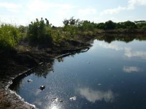 Lagoon overview